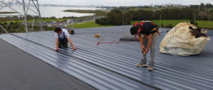 johnson roofing auckland